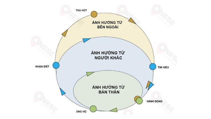 Mô hình OZONE.