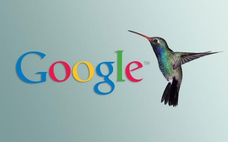 Hummingbird là gì?