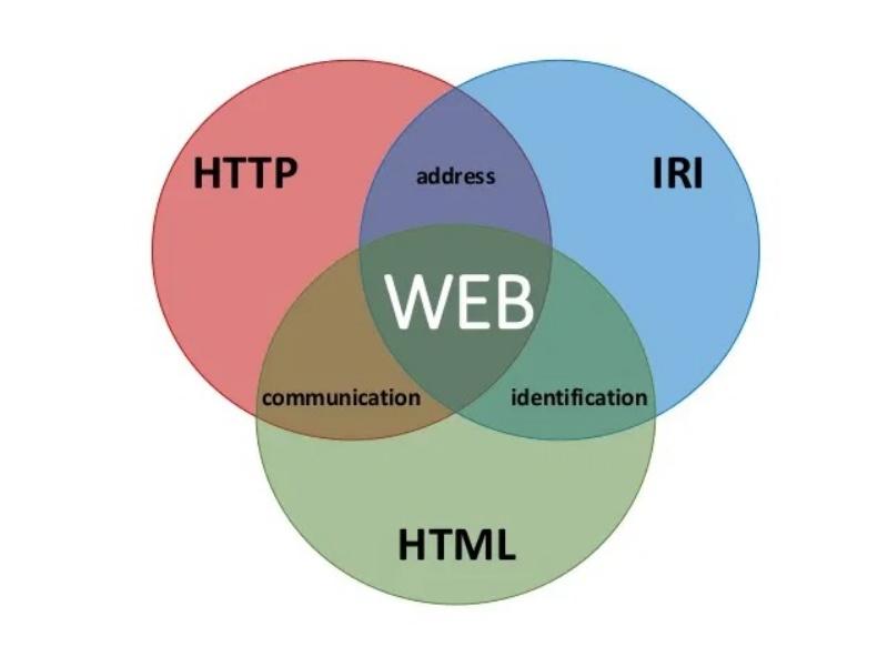 Thuật ngữ nào liên quan đến World Wide Web?